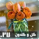 قالب گل و گلدون