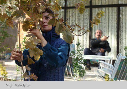 عکس های فیلم زندگی مشترک آقای محمودی و بانو