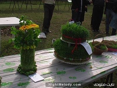 تزیین سبزه هفت سین سال 92