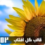 قالب گل آفتابگردان