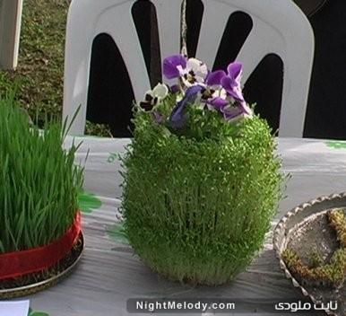 سبزه عید نوروز 92