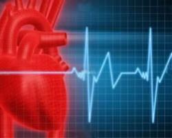 چگونه از بیماری قلبی پیشگیری کنم؟