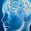 تکنیکهای تقویت حافظه