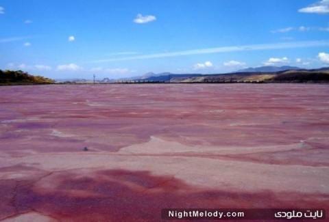 دریاچه غبار گل سرخ در کانادا (Dusty Rose Lake, Canada)