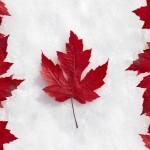 میزان تحصیلات برای مهاجرت به کانادا