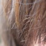 ماسک مو