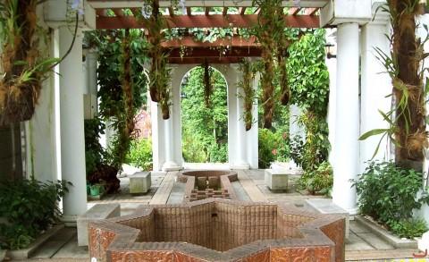 hibiscus_garden1_20120521_1989075890