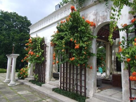hibiscus_garden7_20120521_1535096271