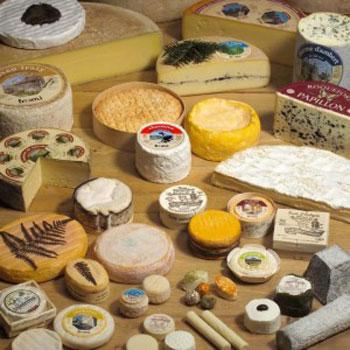 آشنایی با انواع پنیر