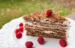 کیک ناپلیونی