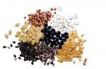 یک بذر خوب چه خصوصیاتی باید داشته باشد؟