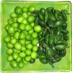 توصیه هایی برای مصرف گوجه سبز و چغاله بادام