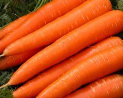 آشنایی با خاصیت های هویج