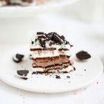 طرز تهیه آسان ترین کیک بستنی