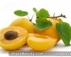 ارزش غذایی زردآلوی خشک و تازه