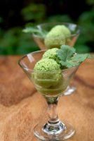 طرز تهیه بستنی رژیمی با آووکادو و لیمو