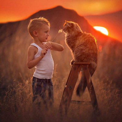زندگی زیباست