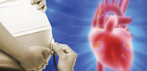 بررسی مشکلات قلب جنین از چه زمانی امکان پذیر است؟