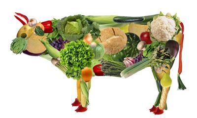 با غذاهای سالم برای گیاهخواران آشنا شوید