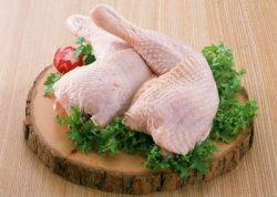 در رابطه با آلرژی مرغان چه می دانید؟